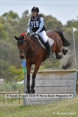 """Katelyn Thompson in the Open Grade 1 riding """"Kendalee Gangster"""""""