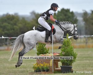 "Jackie Wright rode ""Lakevale Toy Dancer"" placing 4th in the Open Grade 3 with a final score of 34"