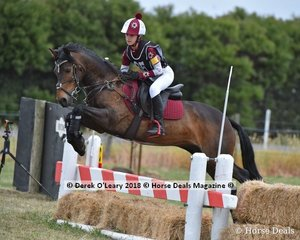 """Hayley Dalton placed 3rd in the Pony Club Grade 4 with a final score of 30 riding """"Champagne Alfonso"""""""