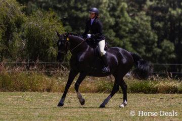 Namarye Parek Shontava & Helen Coleiro- champion ridden Andalusian Derivitive