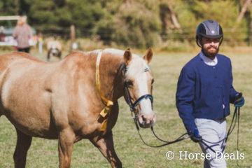Yalkin Galesa & Chris Merullo- Reserve Champion Ridden Partbred Female