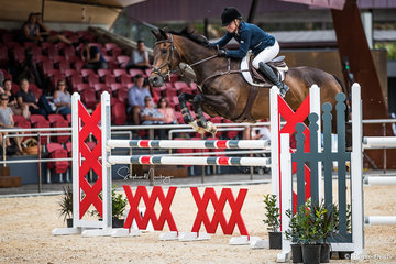 Alisa Williams and 'Broadway Jitterbug' place third in the final of the Amateur final