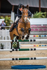 Damien Churchill and 'Franklins Peace' place fourth after a rail in the jump off in a time of 33.77 sec