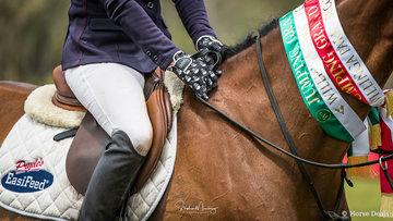 Vicki Roycroft's riding gloves !!