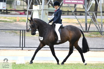 Not much rest for new mother, Tamara Lee. The successful showing professional is pictured aboard the Lee Family nomination, 'Empress Theodora' (15.2-16hh) that was declared Reserve Champion First Season Show Hunter Hack. '