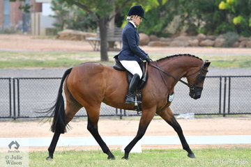 Emma Nicol is pictured aboard her, 'Twohearts Meltdown' during the Final of the 2019 VAS First Season Show Hunter Hack Championship.