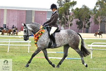 Megan Cheeseman rode the Future Farms nomination, 'Regal Jive FF' by Jive Magic (imp) out of Romance FF to claim the First Season Show Hunter Hack Championship.