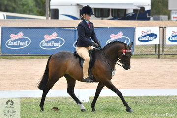 Alannah Burns rode the Uhavta Stud nomination, 'Uhavta Kensington' to claim the Rising Star Large Pony Reserve Championship.