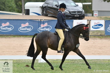 Hayley and Zhoe Willison's, 'Alpine Park Tidal' is pictured during the Rising Star Large Pony Final.