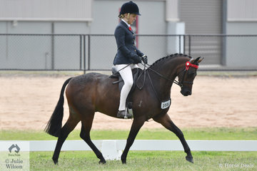 Tamara Lee rode the Lee Family's nomination, 'Kyandra Undercover' (13-13.2hh) to claim the First Season Large Pony Championship.