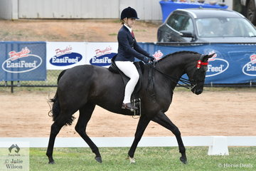 Adelaide Jacobs made Top 5 in the Rising Star Hack/Show Hunter Championship riding her, 'Minstral Park Ballerina'.