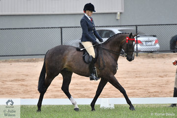 Eliza Green rode her, 'Like A Boss' to claim the 2019 VAS Rising Star Hack/Show Hunter Championship.