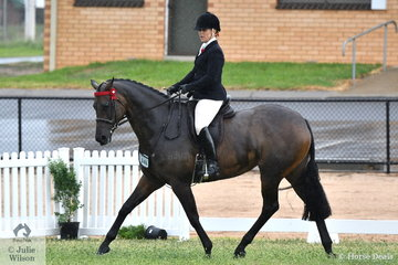 Kathleen Mullan rode her own, 'Divinity' to claim the 2019 VAS First Season Hack Championship. They were also declared Reserve Champion Rising Star Hack/Show Hunter.