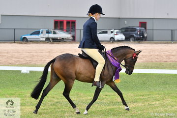 Sarina Quick's, 'Teddy Bear Extravagance' was declared Rising Star Small Pony Reserve Champion.