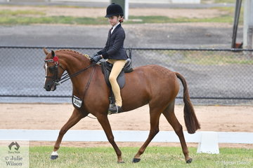 Zhoe Willison rode her own and Hayley Willison's, 'Hamlot Park Holly's Silk' to win the class for Amateur Owner Rider Pony 12-12.2hh. They are pictured during the Championship ride off with the other heights from Small Pony to Hack Over 15hh.