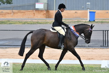 Well performed breeder and exhibitor, Alandi Durling won the class for Amateur Owner Rider Hack Over 15hh with her home bred, 'Sienna Conchetta' and went on to claim the Champion Amateur Owner  Exhibit award.