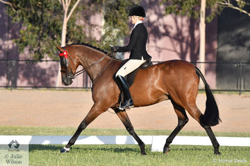 Well known and successful showing exhibitor, Ali Berwick claimed the Racing Victoria Off The Track Thoroughbred Final Championship with her own and Leesa Anderson's 'Revelry RP' by Show A Heart that raced as Tartan Warrior.