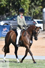 Ebonie Lee rode Karen Fisher's, 'PP Question Time' to claim the Large Show Hunter Pony Championship. Yesterday the good working and typey pony claimed the Large Show Pony/Show Hunter Pony rising Star award.