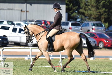 Megan Cheeseman rode the Sabble Farms and Future Farms nomintion, 'Gleniph Tiramisu' to take out the 2019 VAS Show Hunter Galloway Final.