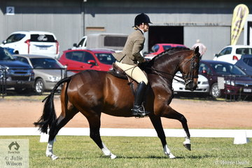 Kristy Marcon qualified in the 15-15.2hh class and then rode away with the 2019 VAS Small Show Hunter Hack Championship with her, 'Coldstream Dream Upon A Star'.