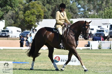 Always amongst the major prizes, Shelley Penny rode her, 'Sheldene Delago' to claim the Small Show Hunter Hack Reserve Championship.