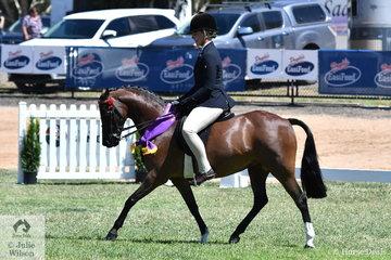 Michelle Paynter rode Naomi Landmeter's, 'Rokewood Tiger Moth' to claim the 2019 VAS Small Pony Reserve Championship.