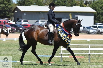 Michelle Paynter rode her very well performed, 'DP Amazing' to claim the 2019 VAS Large Hack Championship.