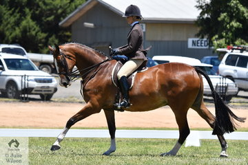 It was good to see Megan Cheeseman back in action with the impressive, 'Gleneagles Giorgio' that made Top Five in the Large Show Hunter Hack Championship.