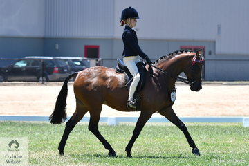 Shayleigh Joblin rode her, 'Maxwood Matador Royale' to make Top Five in the Large Pony Championship.