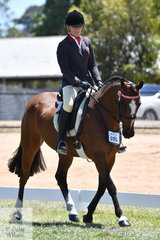 The Hero Final produced some of the best work of the 2019 VAS Saddle Horse Championships. Fiona Sandkuhl made Top Ten with her, 'Operative Princess'.