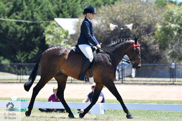 Well know and successful showing exhibitor, Kerry Mulgrew rode, 'Equity Wizzbang' to claim the Hero Final Reserve Championship.