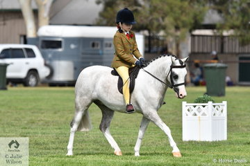In the EA Ring 2, Jordyn Kemp rode, 'Bamborough Kalvin Clein' to take third place in the class for Newcomer Small Show Hunter Pony.