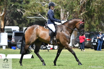 Lisa McCann rode her, 'Ascot' to take out the Newcomer Hack Reserve Championship.