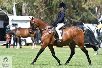 Shayleigh Joblin rode , 'Maxwell Matador Royale' to win the EA class for Rider 8-9 Years.