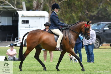 Georgia Adams rode her, 'Riversea Park Repertoire' to win the EA class for Open Galloway 14-14.2hh.