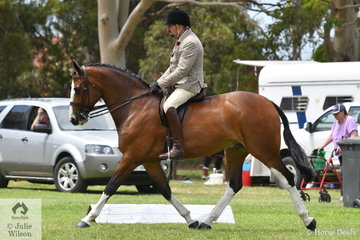 Certainly value for money. Brian Scholes rode his super, 'A Welcome Stranger' to claim the EA Show Hunter Hack Championship.