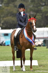 Stella Patterson rode her, 'Karlana Let's Party' to win the class for Open Galloway 14.2-15hh and claim the EA Galloway Championship.