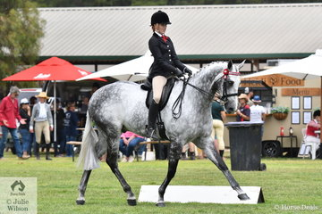 Kaitlyn Labahn rode her mother, Michelle Labahn's good working and beautiful, 'Rolex II' to take third place in the class for Open Hack Over 16hh.