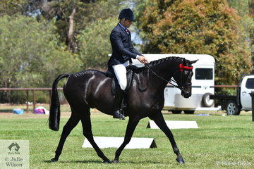 Reece Lawson rode  Trudy Kelly's, 'Beaumont King Of Kings' to claim the Riding Pony Society Over 14.2hh Hack/Show Hunter Supreme Championship.