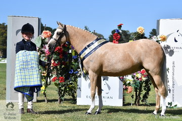 Gracie Hunphreys and 'Karlana Spring  Chatter' had a wonderful day yesterday at the EV Summer Horse Show and today they just kept on winning, taking out the APSB Part Bred Pony of the Year and the Supreme Led B,C,D Buckskin awards.