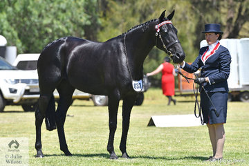 Virginia Brosnan claimed the 25th Victorian Champion Led Standardbred Mare award with her, 'Elegantly'.