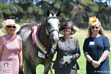 Jodie Thompson took out the Supreme Led Partbred Standardbred award with her, 'Tramels Surprise'. Jodie is pictured with judges, L-R Sue Strett and Kaylene McCarthy.