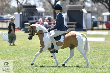 Charlotte Richardson claimed the Supreme Ridden Pinto award with , 'Vancouver Park Royal Rumours'.