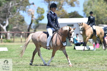 Kayla Gell rode Lillian Cooke's, 'Kawanna Park Napoleon' to claim the APSB ring Ridden Welsh Championship.