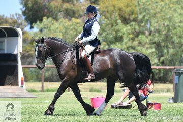 Katie Osbourne rode her, 'Harvey' to take second place in the class for Ridden Partbred Clydesdale Male.