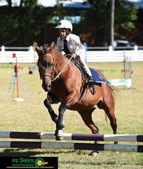 Concentrating over the final fence in the 7 years and under 9 E Grade Show Jumping was Lachie Provost and his horse ET on the first day of the 2019 Kingstown Jamboree.