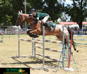 A Grade rider, William Wood rode a clear round on Cupcake on the first day of competition at the 2019 Kingstown Jamboree held in Guyra, NSW.