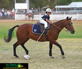 Lachie Provost from Walcha and his horse ET have a close call in the 7 years and under 9 Bonfeild Bounce at the 2019 Kingstown Jamboree.