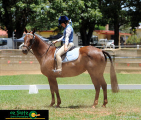 At her first Pony Club Jamboree, 15 year old Kiara Charlton and her mare, Frizzle competed in the Prelim 1.2 Dressage on the first day of the 2019 Kingstown Jamboree.