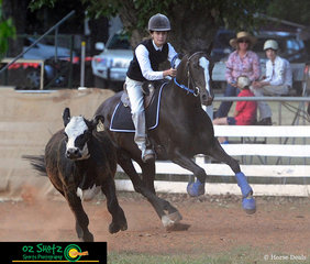 Oz shotz staff member Abbey McLoughlin had the weekend off to ride her 15yr old Australian Stock Horse, Nugget in the 15 years and Under 17 Campdrafting at the 2019 Kingstown Jamboree.